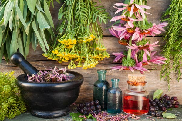 Herbal Treatments for fibromyalgia